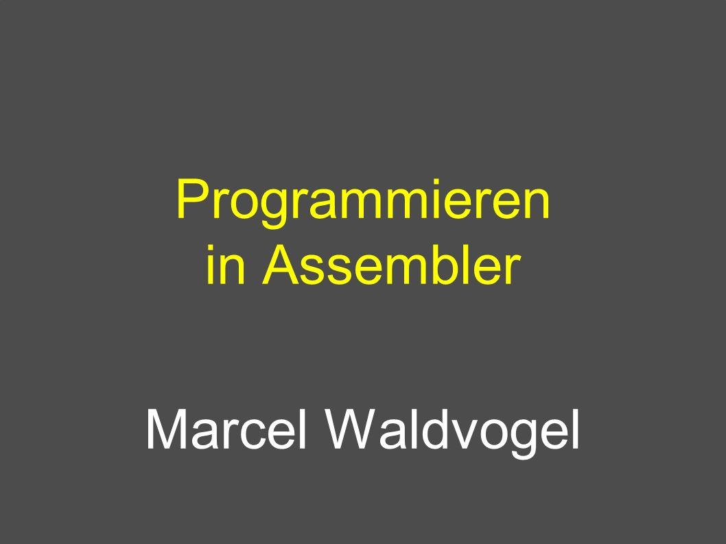 Programmieren in Assembler Marcel Waldvogel