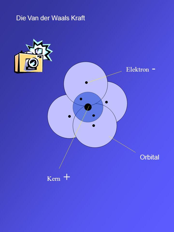 + Eine Wasserstoffbrücke entsteht zwischen stark positiv polarisierten H- Atomen und stark negativ polarisierten O, N und F- Atomen = sehr starke Dipolkraft Die Dipolkraft ist die Kraft, welche zwischen positiv und negativ polarisierten Atomen/Molekülen wirkt