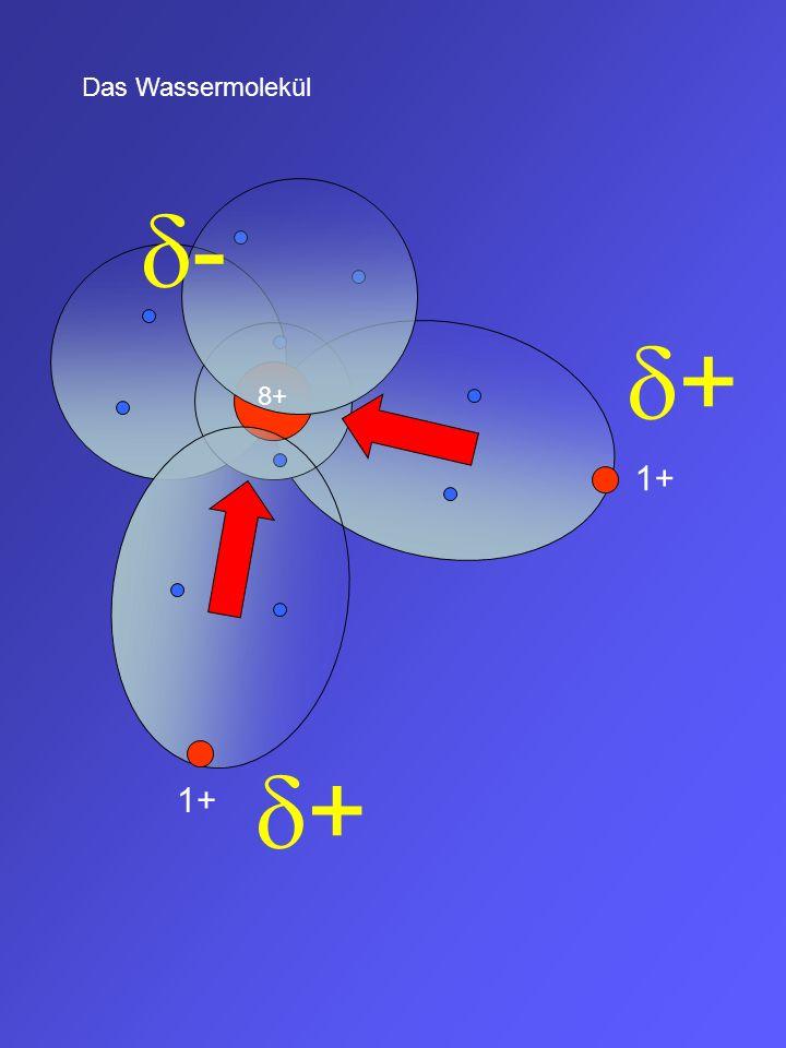1+ + + 8+ - EN O = 3,5 EN H = 2,1 EN= 1,4 Das bedeutet, eine O-H-Bindung ist eine stark polare Bindung mit + bei Wasserstoff und - bei Sauerstoff Das Wassermolekül ist ein gewinkeltes Molekül mit zwei polaren Bindungen.