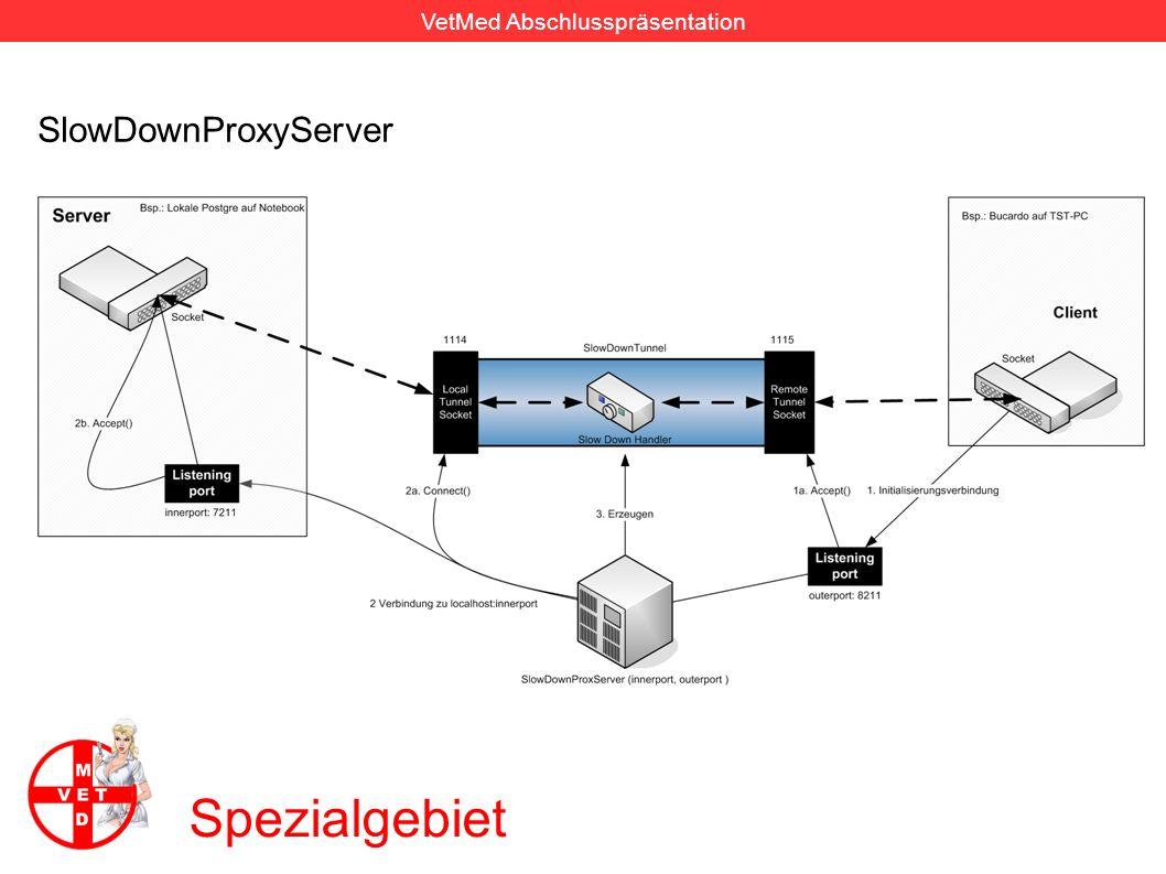 VetMed Abschlusspräsentation Spezialgebiet SlowDownInternalConnector