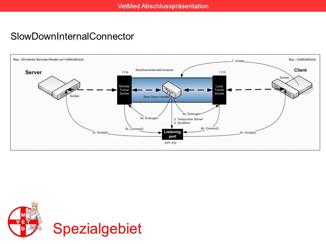 VetMed Abschlusspräsentation Spezialgebiet SlowDownExternalConnector