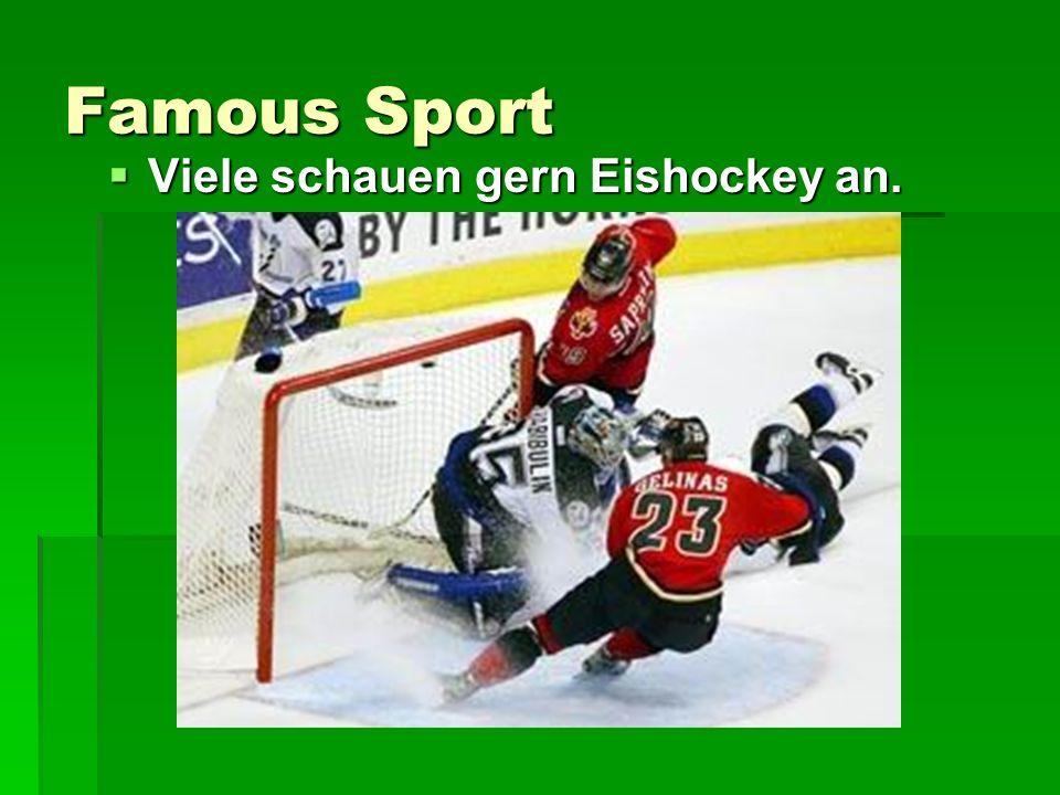 Famous Sport Viele schauen gern Eishockey an. Viele schauen gern Eishockey an.