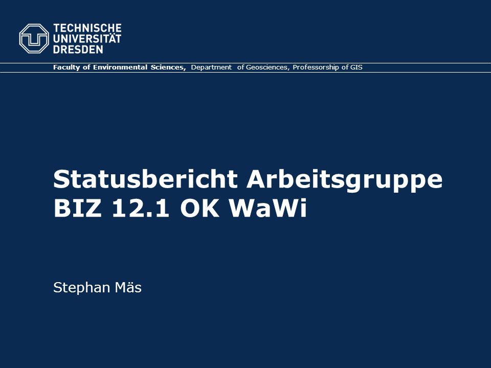 Statusbericht Arbeitsgruppe BIZ 12.1 OK WaWi Faculty of Environmental Sciences, Department of Geosciences, Professorship of GIS Stephan Mäs