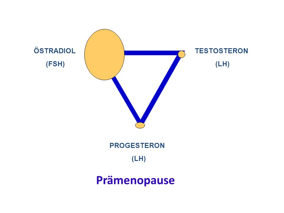 PROGESTERON (LH) TESTOSTERON (LH) ÖSTRADIOL (FSH) Prämenopause