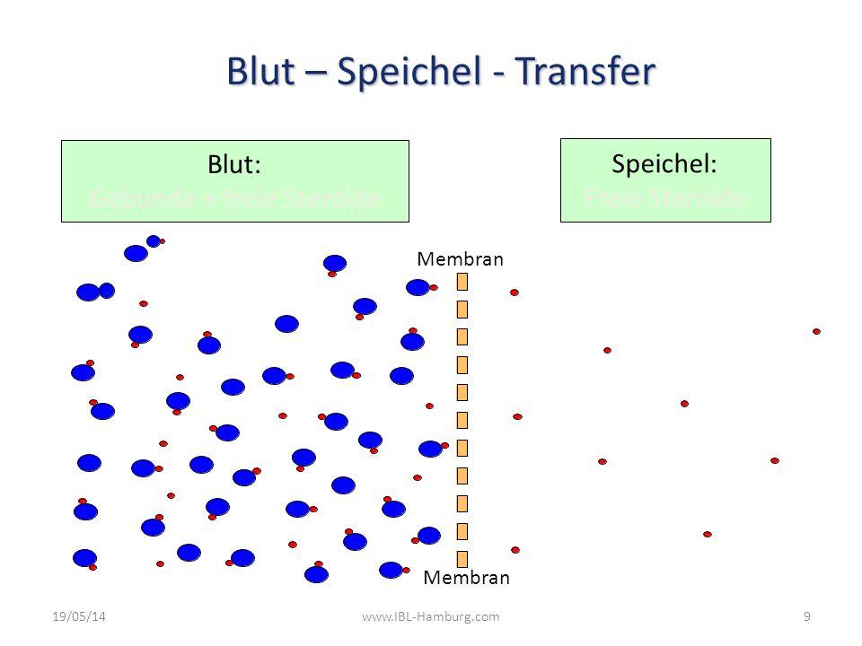 19/05/14www.IBL-Hamburg.com9 Speichel: Freie Steroide Blut: Gebunde + freie Steroide Membran Blut – Speichel - Transfer