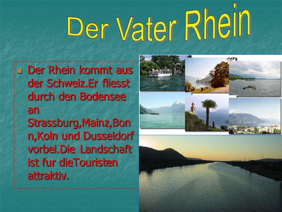 Der Rhein kommt aus der Schweiz.Er fliesst durch den Bodensee an Strassburg,Mainz,Bon n,Koln und Dusseldorf vorbei.Die Landschaft ist fur dieTouristen attraktiv.