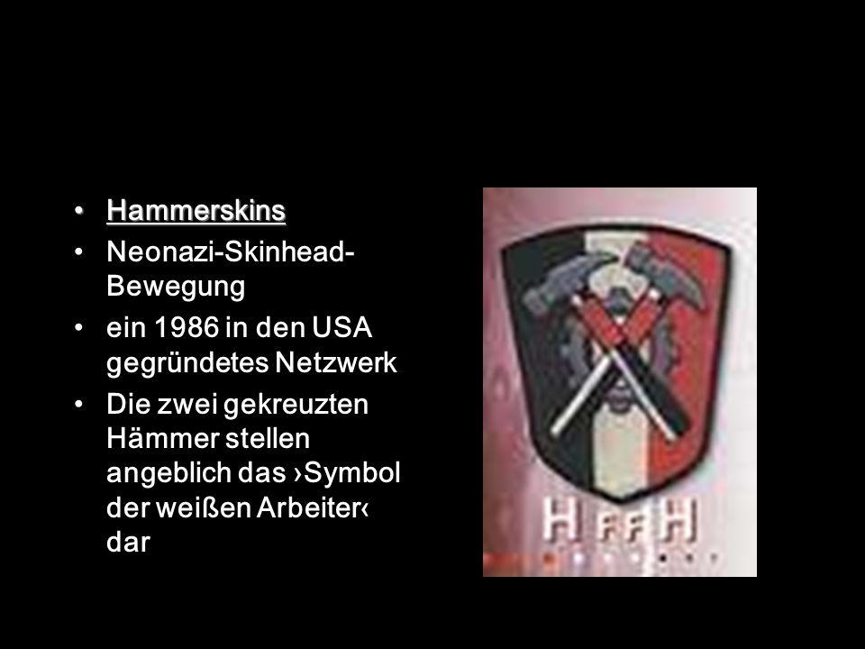 Hammerskins Neonazi-Skinhead- Bewegung ein 1986 in den USA gegründetes Netzwerk Die zwei gekreuzten Hämmer stellen angeblich das Symbol der weißen Arbeiter dar