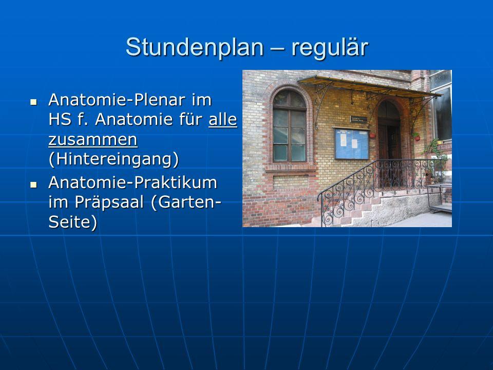 Stundenplan – regulär Anatomie-Plenar im HS f.