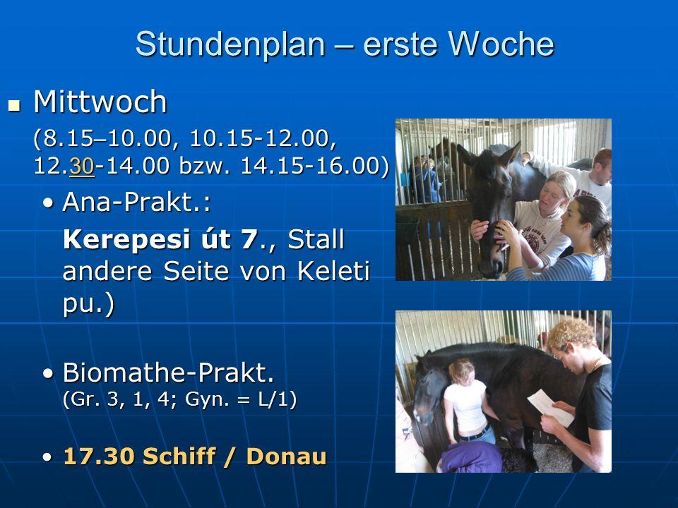 Stundenplan – erste Woche Mittwoch Mittwoch (8.15 – 10.00, 10.15-12.00, 12.