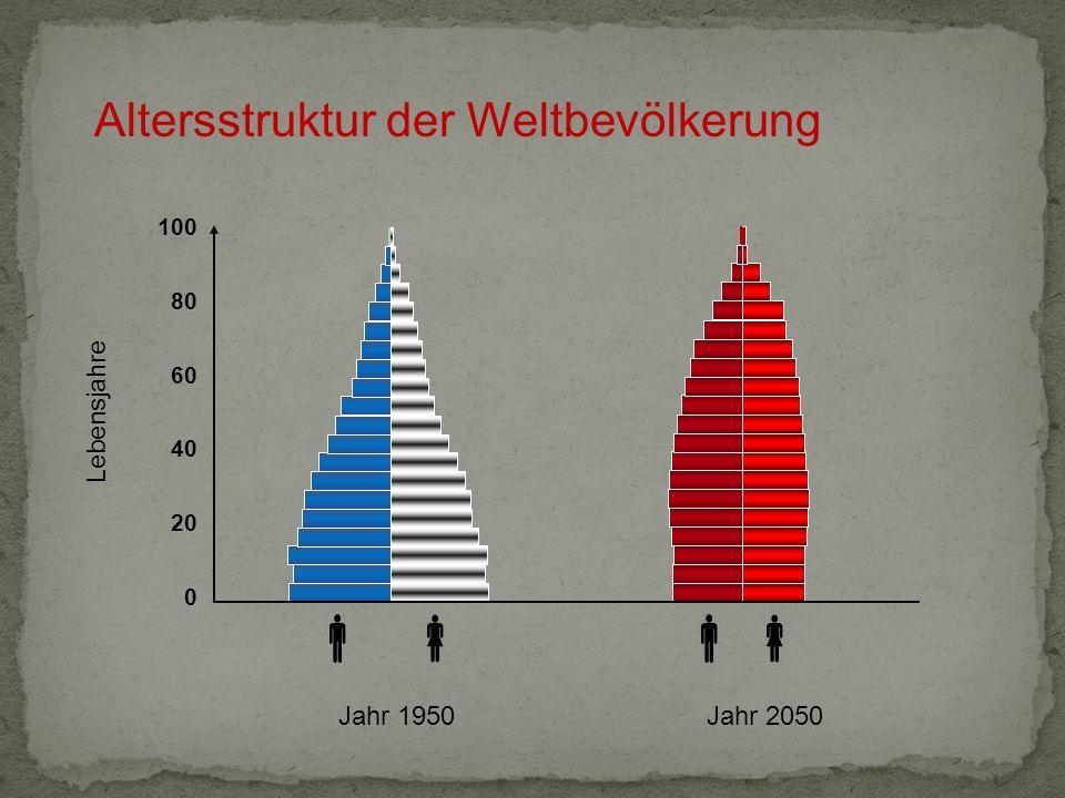 Altersstruktur der Weltbevölkerung Jahr 2050Jahr 1950 Lebensjahre 100 80 60 40 20 0