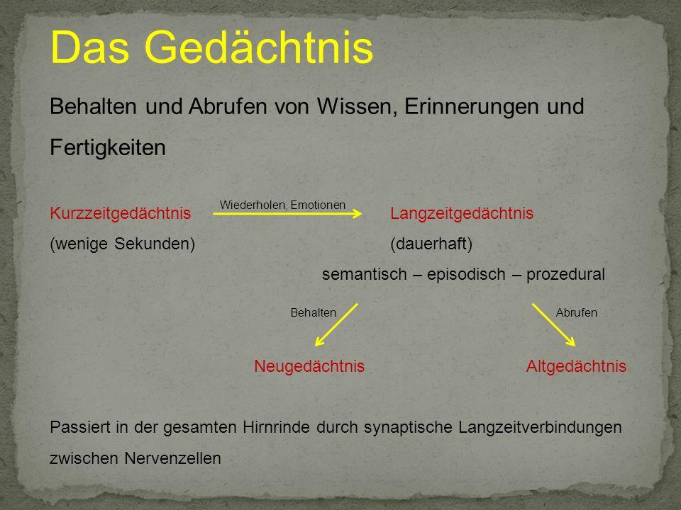 Vergesslichkeit medizinisch: mild cognitive impairment unspezifische Neugedächtnisprobleme normale allgemeine kognitive Leistungen v.