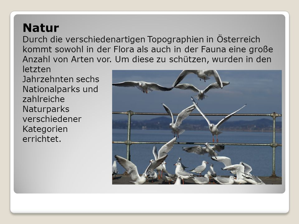 Natur Durch die verschiedenartigen Topographien in Österreich kommt sowohl in der Flora als auch in der Fauna eine große Anzahl von Arten vor. Um dies