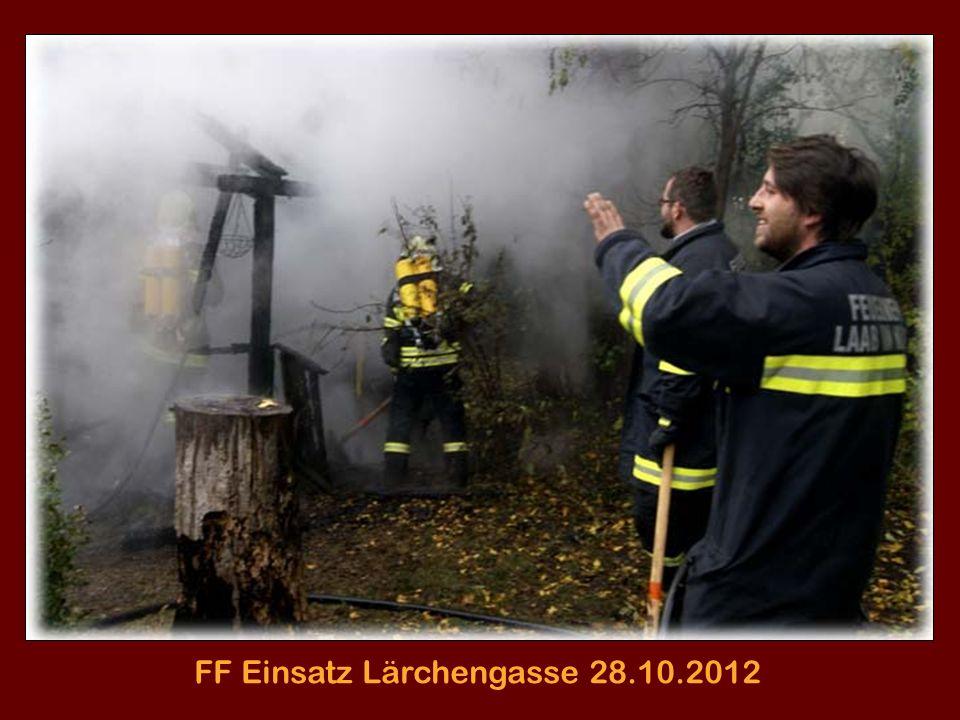 Laaber Blätter am Hauptplatz 28.10.2012