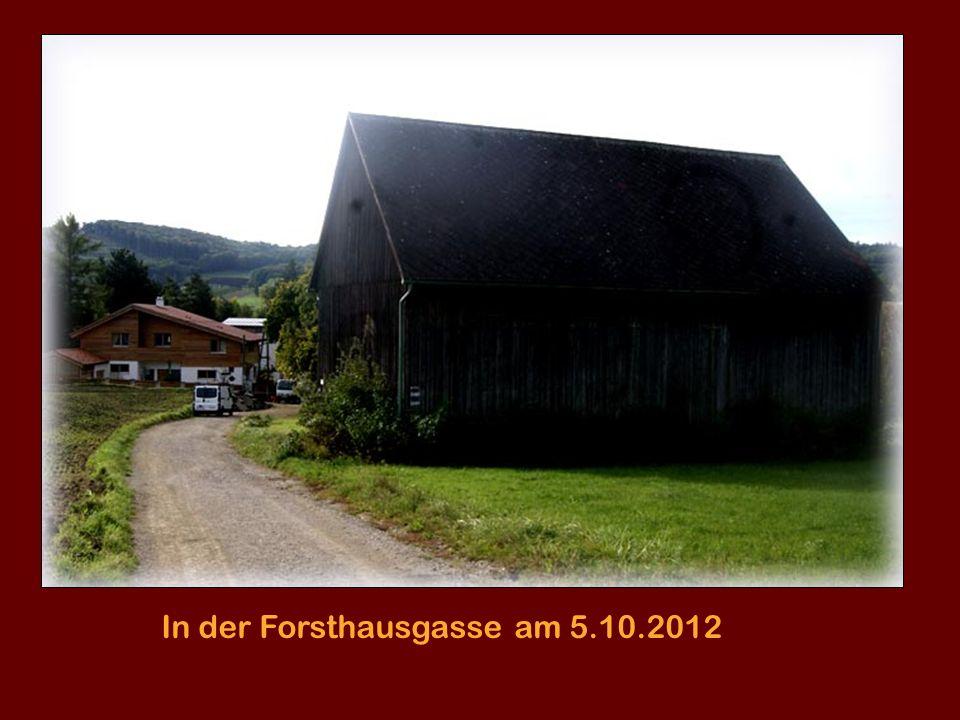 In der Forsthausgasse am 5.10.2012