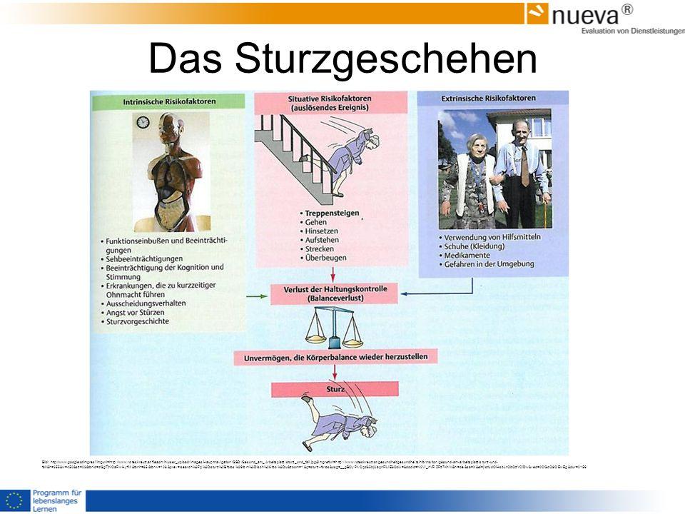 Das Sturzgeschehen Bild: http://www.google.at/imgres?imgurl=http://www.roteskreuz.at/fileadmin/user_upload/Images/Hauptnavigation/GSD/Gesund_am_Arbeit