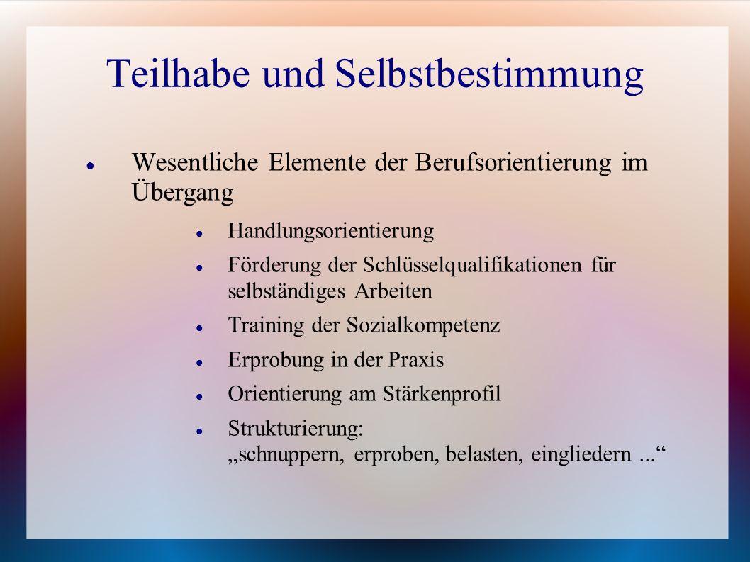 Teilhabe und Selbstbestimmung Wesentliche Elemente der Berufsorientierung im Übergang Handlungsorientierung Förderung der Schlüsselqualifikationen für