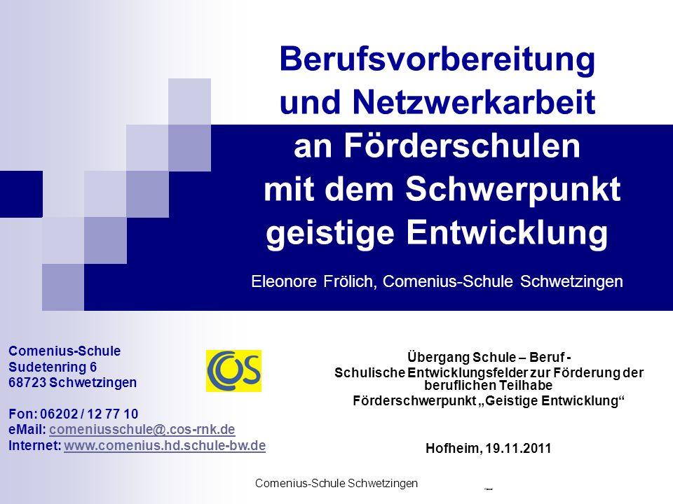 Comenius-Schule Schwetzingen Förderschule mit dem Schwerpunkt geistige Entwicklung Derzeit 156 Schülerinnen und Schüler 26 Klassen, davon 10 Außen- Klassen an Grund-, Haupt-, Werkrealschulen der umliegenden Gemeinden 4 BVE- Klassen an 2 Berufsschulen
