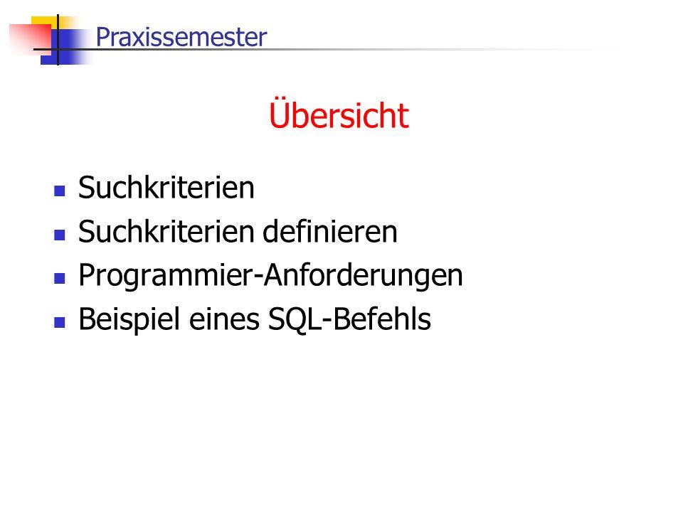 Praxissemester Übersicht Suchkriterien Suchkriterien definieren Programmier-Anforderungen Beispiel eines SQL-Befehls