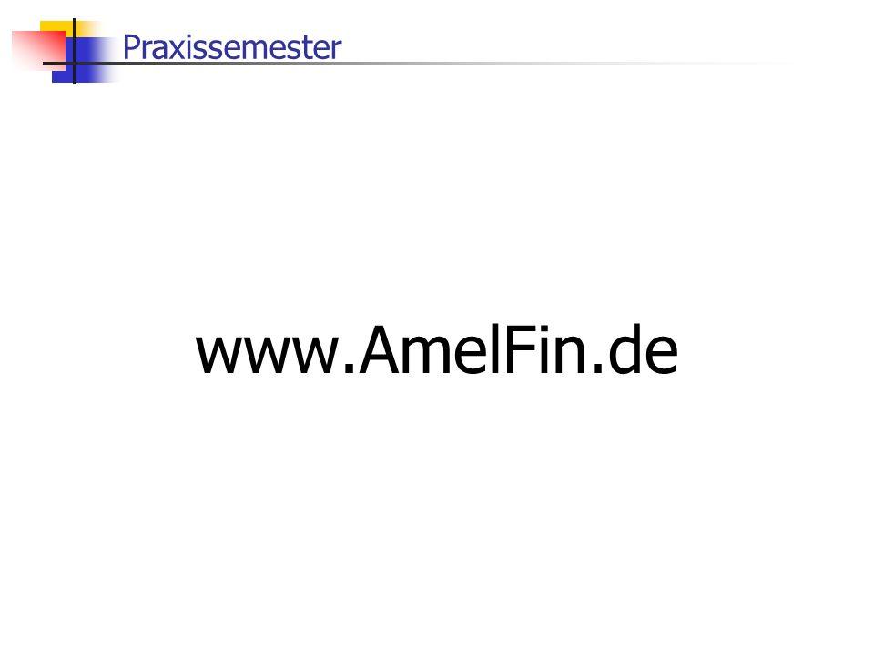 Praxissemester www.AmelFin.de