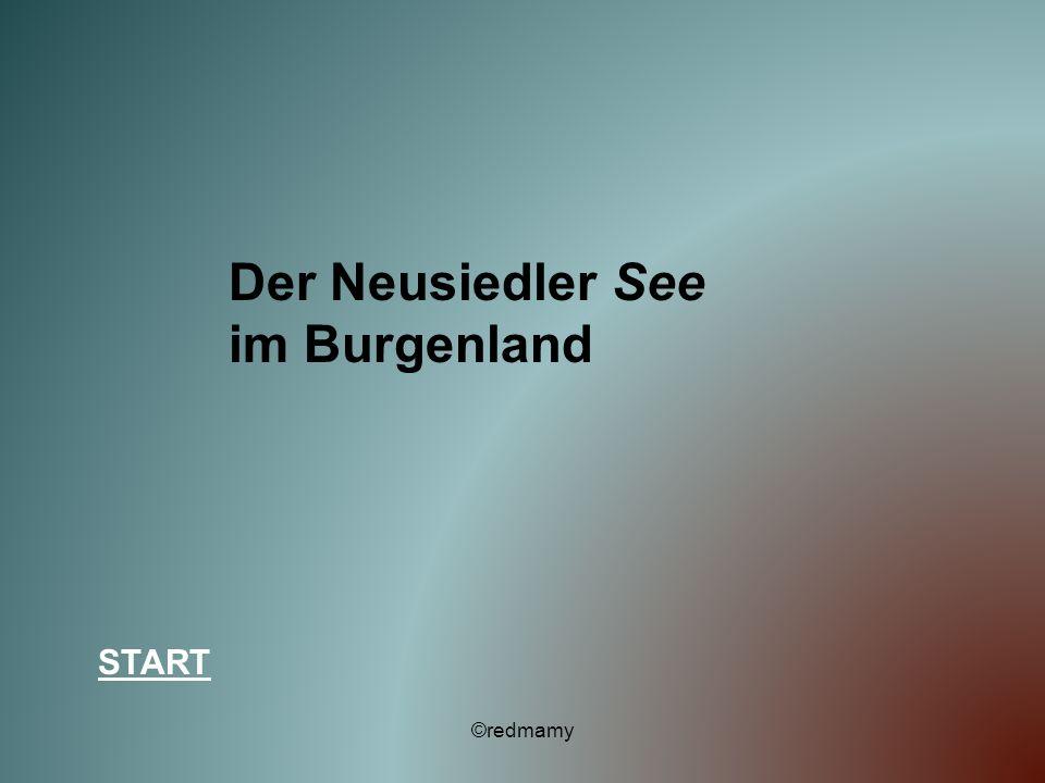 Der Neusiedler See im Burgenland START ©redmamy