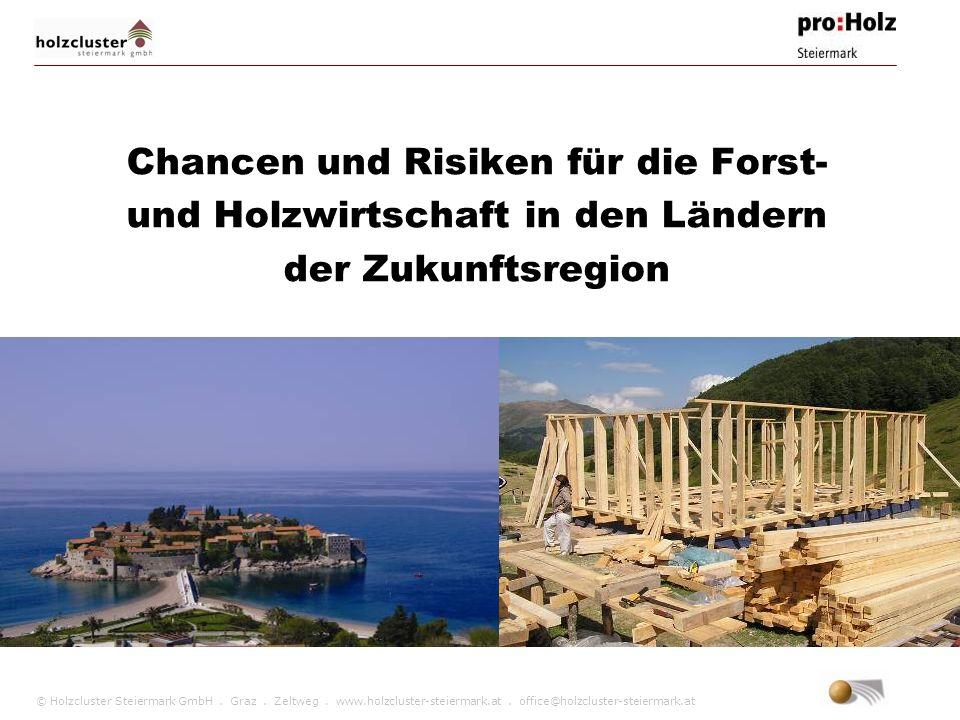 © Holzcluster Steiermark GmbH. Graz. Zeltweg. www.holzcluster-steiermark.at. office@holzcluster-steiermark.at Chancen und Risiken für die Forst- und H