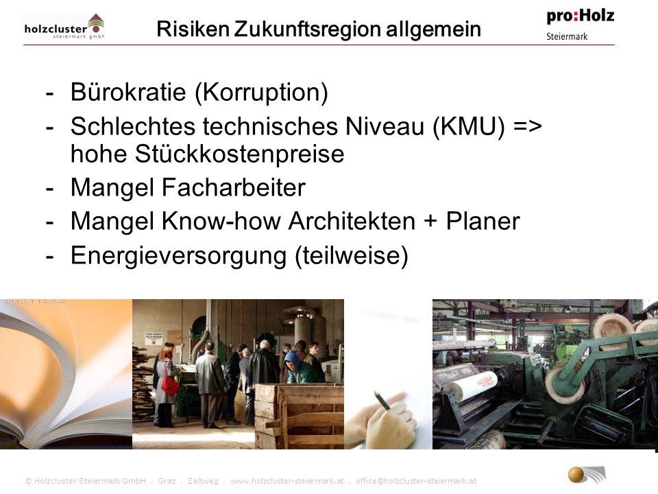 © Holzcluster Steiermark GmbH. Graz. Zeltweg. www.holzcluster-steiermark.at. office@holzcluster-steiermark.at Risiken Zukunftsregion allgemein -Bürokr