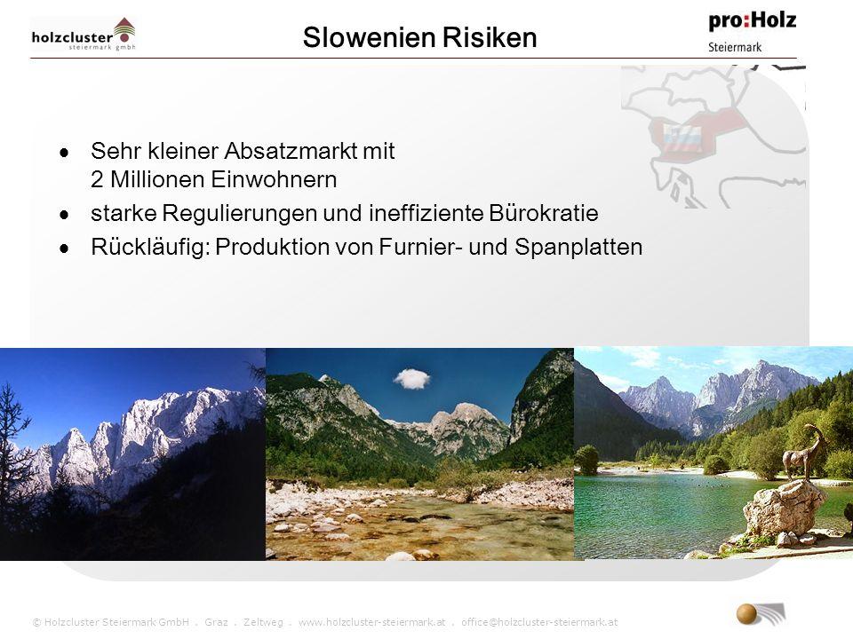 © Holzcluster Steiermark GmbH. Graz. Zeltweg. www.holzcluster-steiermark.at. office@holzcluster-steiermark.at Slowenien Risiken Sehr kleiner Absatzmar