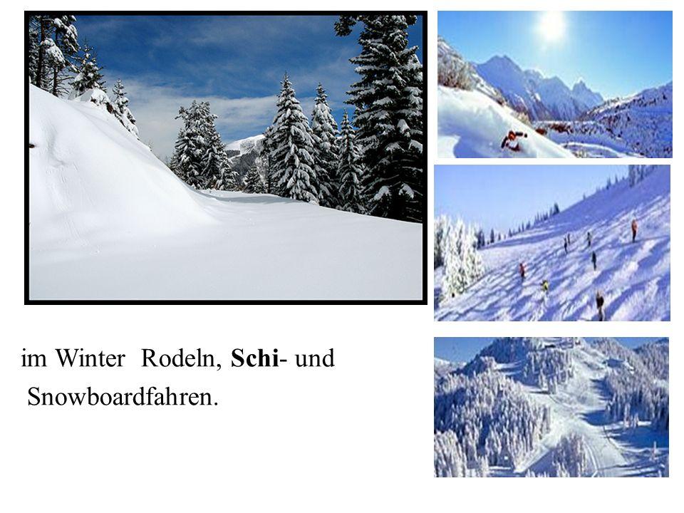 im Winter Rodeln, Schi- und Snowboardfahren.