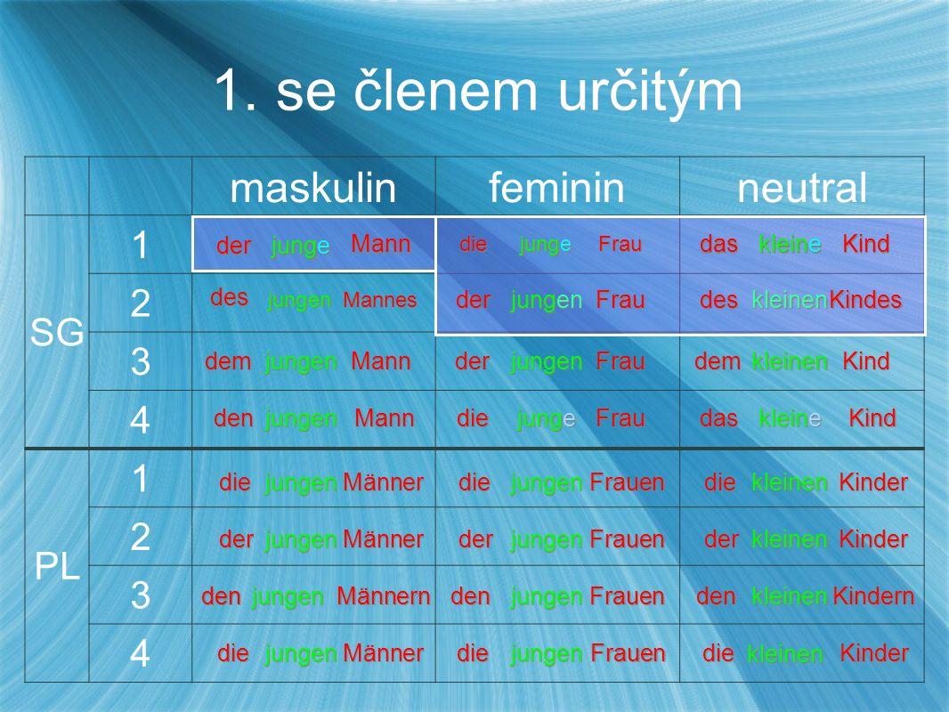 maskulinfemininneutral SG 1 2 3 4 PL 1 2 3 4 1. se členem určitým 1.