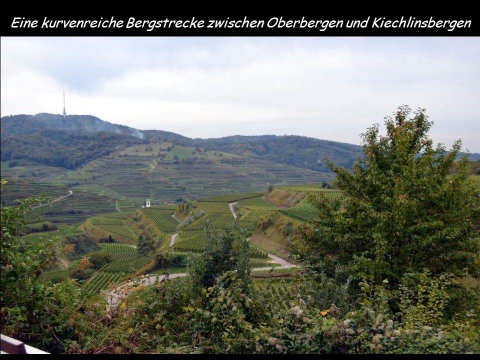 Eine kurvenreiche Bergstrecke zwischen Oberbergen und Kiechlinsbergen