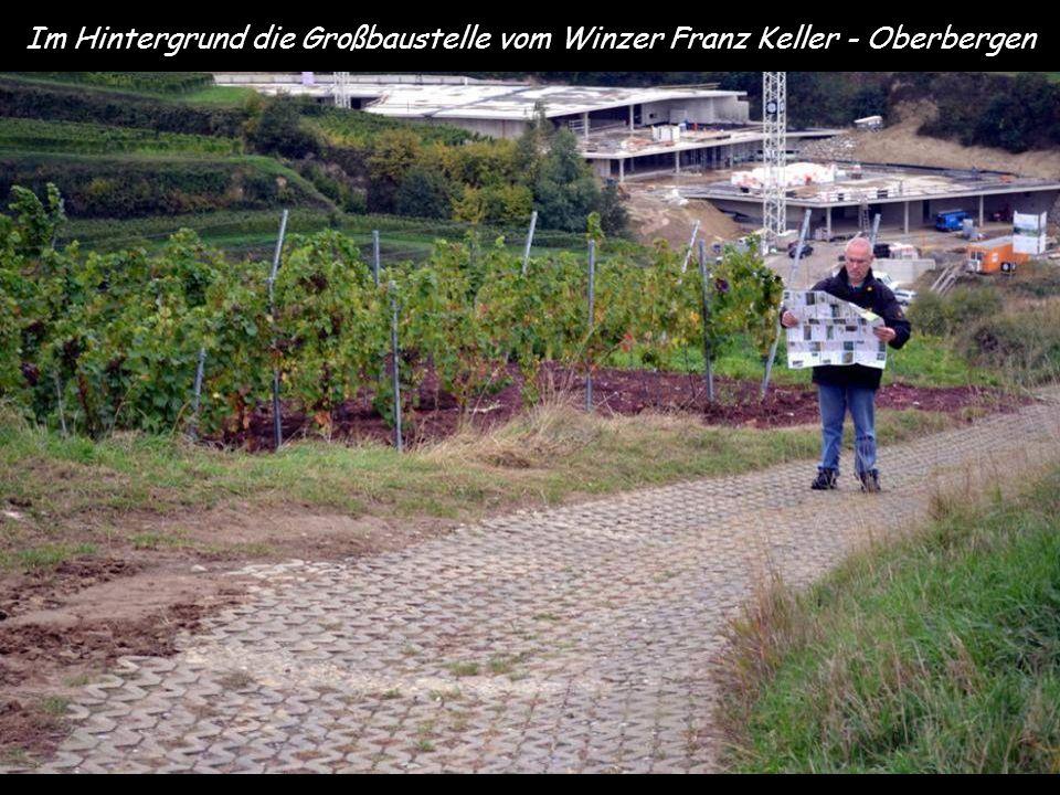 Im Hintergrund die Großbaustelle vom Winzer Franz Keller - Oberbergen