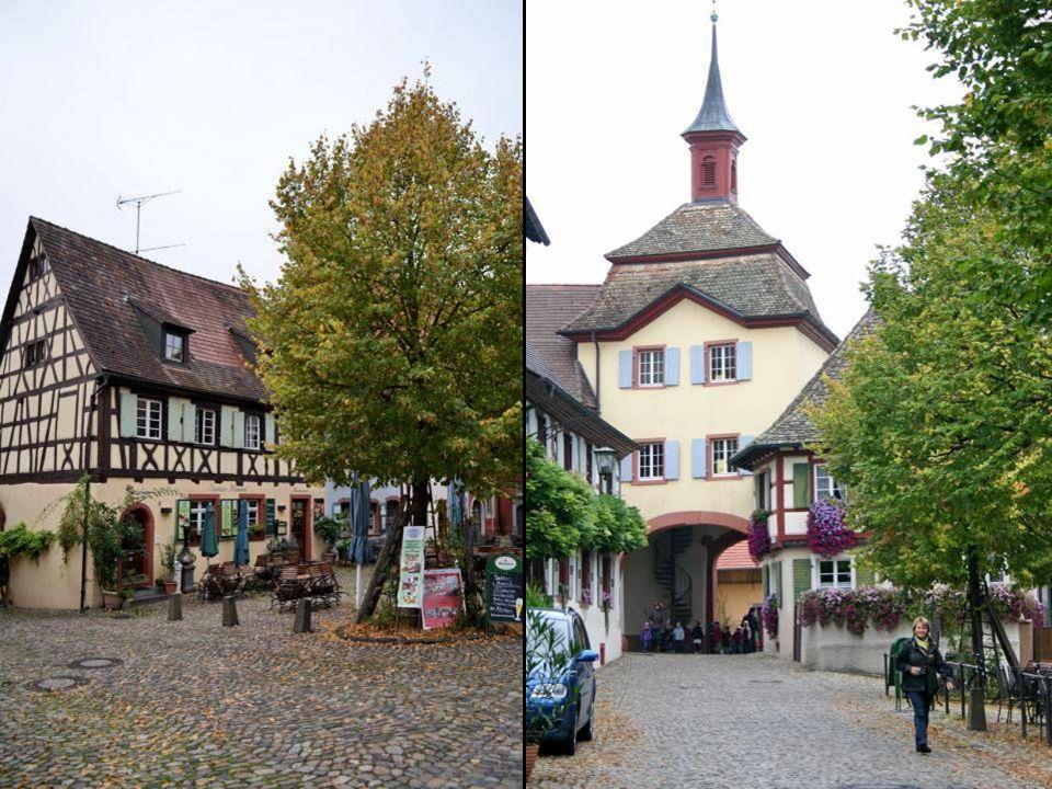 V-Burkheim – Endingen – V-Oberbergen Ende Part 2 08.10.2012