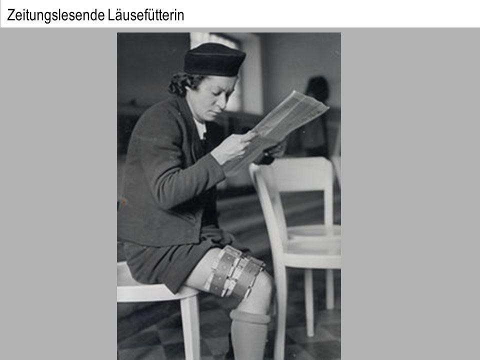 Zeitungslesende Läusefütterin