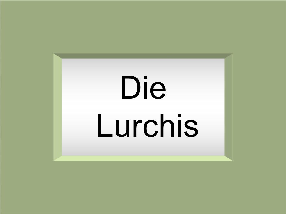Die Lurchis