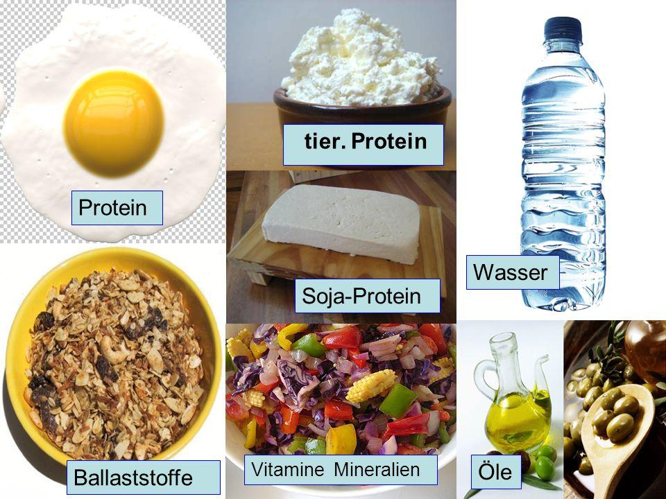 Wer verliert – gewinnt! Protein Wasser Ballaststoffe Öle Soja-Protein tier. Protein Vitamine Mineralien