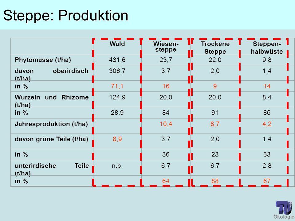 Ökologie Steppe: Produktion Wald Wiesen- steppe Trockene Steppe Steppen- halbwüste Phytomasse (t/ha)431,623,722,09,8 davon oberirdisch (t/ha) 306,73,7