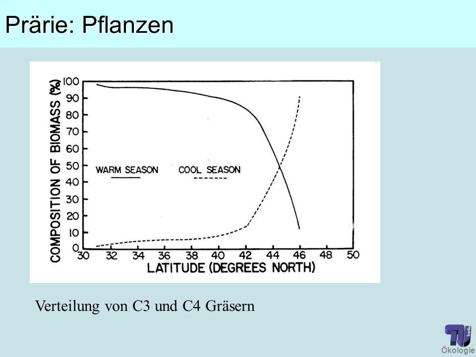 Ökologie Prärie: Pflanzen Verteilung von C3 und C4 Gräsern