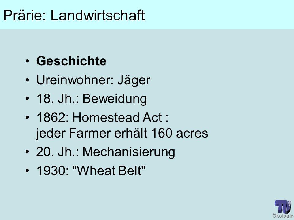 Ökologie Prärie: Landwirtschaft Geschichte Ureinwohner: Jäger 18. Jh.: Beweidung 1862: Homestead Act : jeder Farmer erhält 160 acres 20. Jh.: Mechanis