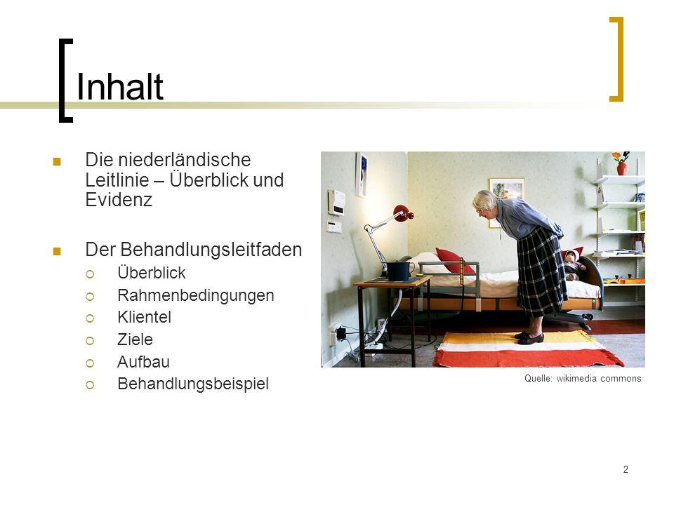 2 Inhalt Die niederländische Leitlinie – Überblick und Evidenz Der Behandlungsleitfaden Überblick Rahmenbedingungen Klientel Ziele Aufbau Behandlungsb