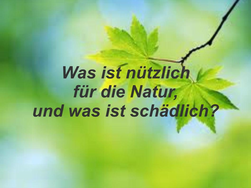 Was ist nützlich für die Natur, und was ist schädlich