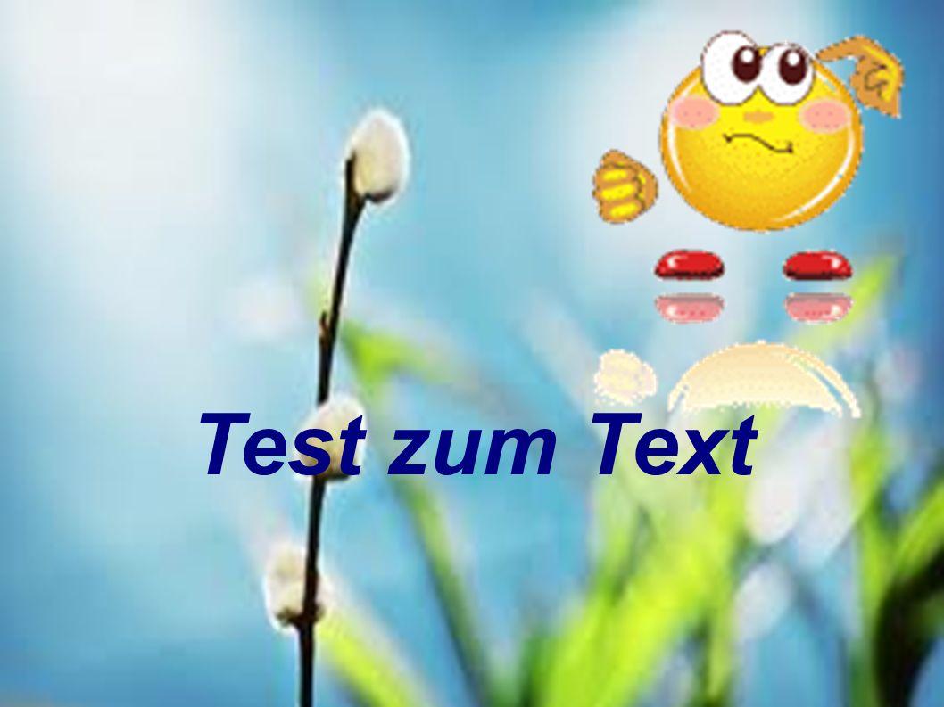 Test zum Text