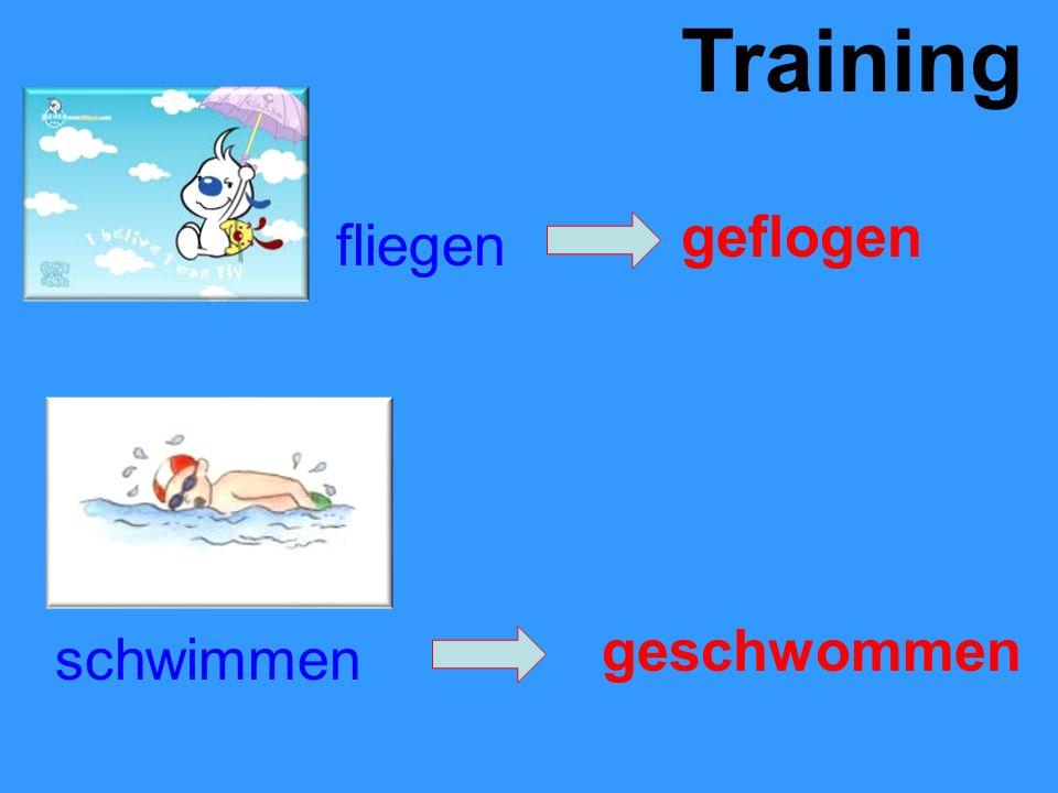 Training fliegen geflogen schwimmen geschwommen