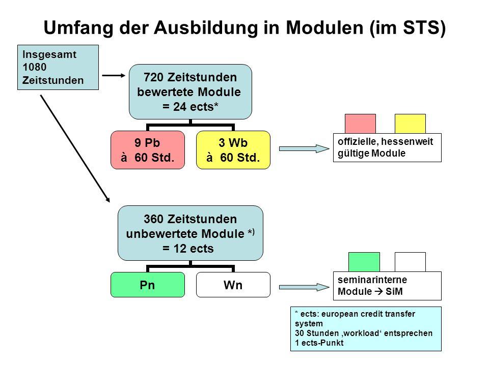 720 Zeitstunden bewertete Module = 24 ects* 9 Pb à 60 Std.