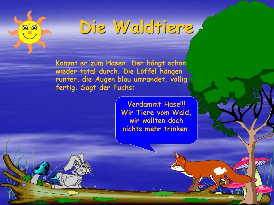 Die Waldtiere Der Fuchs: Na gut, heute lass ich dir das noch mal durchgehen. Aber morgen fress ich dich, wenn das noch mal so geht!