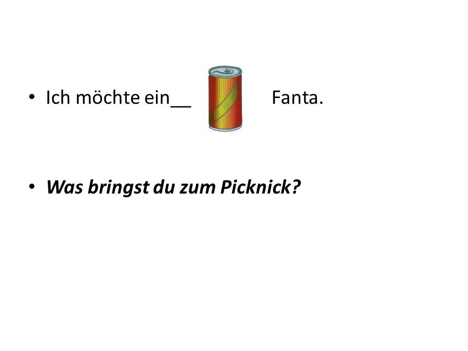 Ich möchte ein__ Fanta. Was bringst du zum Picknick?