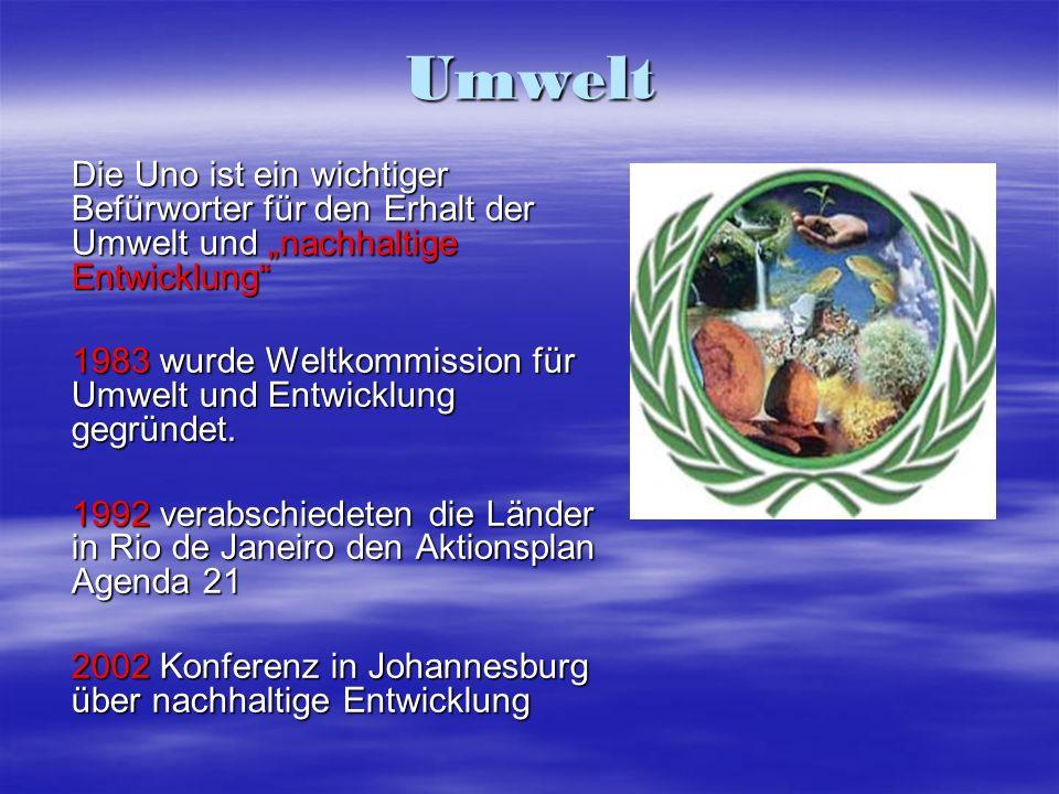 Umwelt Die Uno ist ein wichtiger Befürworter für den Erhalt der Umwelt und nachhaltige Entwicklung 1983 wurde Weltkommission für Umwelt und Entwicklun