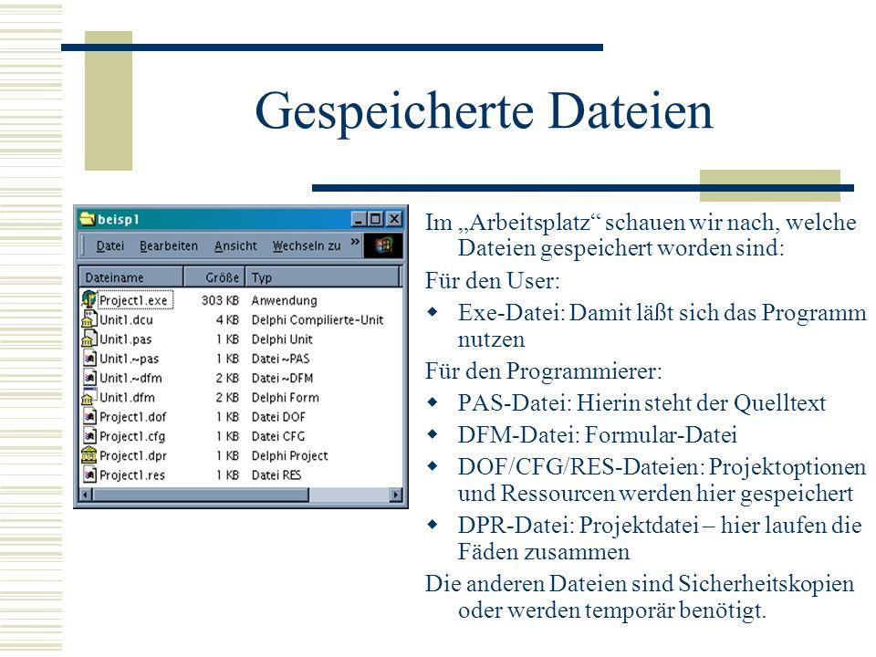 Gespeicherte Dateien Im Arbeitsplatz schauen wir nach, welche Dateien gespeichert worden sind: Für den User: Exe-Datei: Damit läßt sich das Programm n