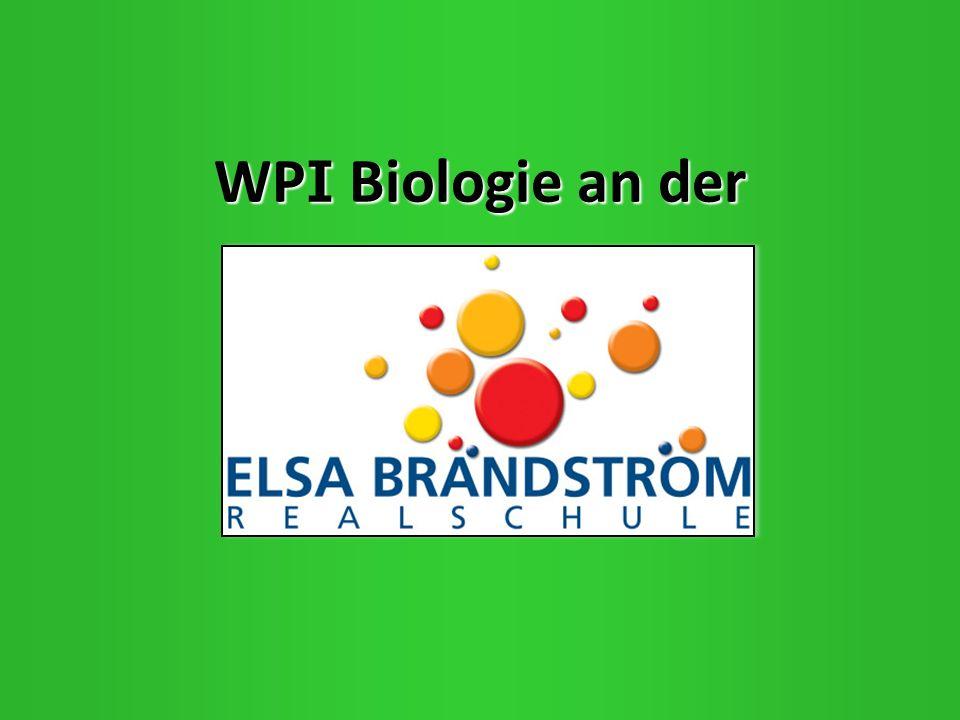 WP I Biologie an der WP I Biologie an der