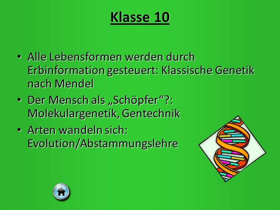 Klasse 10Klasse 10 Alle Lebensformen werden durch Erbinformation gesteuert: Klassische Genetik nach Mendel Alle Lebensformen werden durch Erbinformation gesteuert: Klassische Genetik nach Mendel Der Mensch als Schöpfer?: Molekulargenetik, Gentechnik Der Mensch als Schöpfer?: Molekulargenetik, Gentechnik Arten wandeln sich: Evolution/Abstammungslehre Arten wandeln sich: Evolution/Abstammungslehre