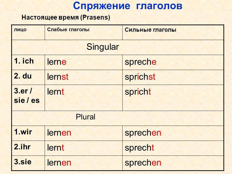 Спряжение глаголов лицоСлабые глаголы Сильные глаголы Singular 1. ich lernespreche 2. du lernstsprichst 3.er / sie / es lerntspricht Plural 1.wir lern